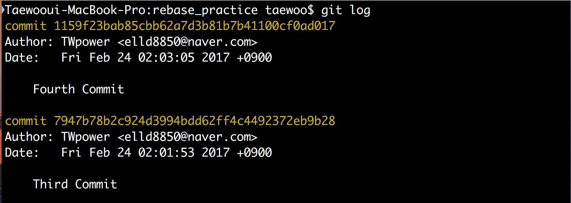 Git Log Result